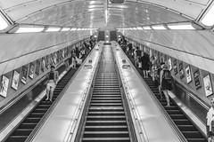 Escalator (t-a-i) Tags: voigtlnder metro candid 7rii sony7rii voigtlandernoktonclassicsc35mmf14 street sony voigtlander35mmf14 35mm a7r2 35mmf14 people unitedkingdom a7rmkii escalator underground london marblearch voigtlander sonya7rii tube sonyilce7rm2 ilce7rm2 voigtlandernoktonclassicsc35mmf14 a7rii uk voigtlnder35mmf14