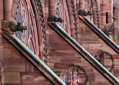 Strasbourg-2016-02-13-154 (Sambaphi) Tags: strasbourg alsace france cathdrale cathedral notredame gargouille gargoyle