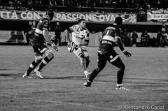 Ugo Gori passing