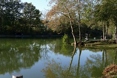 La Tour de Salvagny - Etang de pche (larsen & co) Tags: france rhne panasonic reflets tang rhnealpes latourdesalavagny panasonicdmcfz1000 lumixfz1000 tangdepche
