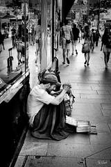 Alone (Sonnywood) Tags: street people blackandwhite canon 50mm alone homeless sydney streetphotography australia dslr bnw