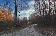 Winding Farm Road at Twilight (r.w.dawson) Tags: road landscape virginia us woods unitedstates farm va 2014 kinggeorgecounty