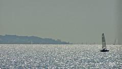 solent evening (peter_vasey) Tags: seascape island evening yacht moth isleofwight solent yachts hydrofoil gosport vasey dschx20 mothclass vaseyp sonydschx20