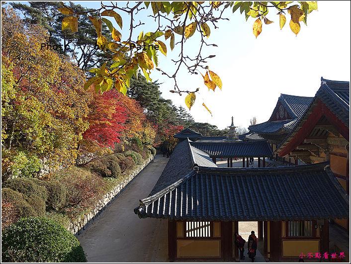慶州佛國寺 (31).JPG
