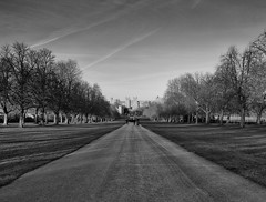 The Long Walk (peter.guyan) Tags: blackandwhite bw white black castle silver eos long walk windsor polarizer heliopan leefilters 06nd heliopanpolarizer 5dmkii eos5dmkii silverefexpro2