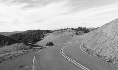 (sftrajan) Tags: california road bw countryside blackwhite december marin hills marincounty mounttam mounttamalpais 2014 mounttamalpaisstatepark