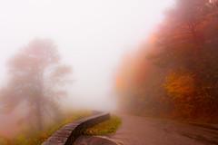 Misty Blue Ridge Parkway (Matthias-Hillen) Tags: blue autumn usa fall misty fog america landscape nebel laub herbst north foggy ridge parkway matthias carolina amerika landschaft hillen nebelig matthiashillen