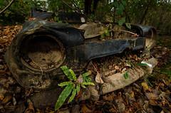 TERMINUS (ninadelf) Tags: autumn automne voiture autumnleaves pollution fort rouille abandonn pave feuillesmortes