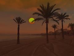 sunrise with palms PA117317 (hans 1960) Tags: sky sun sol beach nature strand sunrise landscape atardecer soleil sand meer wasser urlaub himmel compo palm hotels landschaft sonne sonnenaufgang holyday palmen