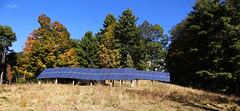 Solar Hill (wyojones) Tags: autumn trees energy vermont electricity np brattleboro solarpanels westernavenue fallfoilage pleistocene solararray solarfarm mammothtusk harrishill fossilsite wyojones solarhill blakespasture solarhillmansion