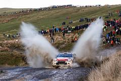WRC WALES RALLY GB 2014 (mundialderallys) Tags: world auto november car sport wales finland championship novembre rally citroen du racing des wrc terre monde rallyes gravel rallye motorsport rallying championnat paysdegalles ds3wrc