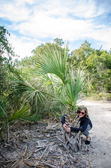 Hugging a little palm tree (m01229) Tags: hug trail palmtree fortpulaski d5100