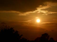 DSCN2750 (Nibbler1977) Tags: sunset sky orange cloud sun tree silhouette set skyline clouds sundown silhouettes sunsets orangesky burningsky setting