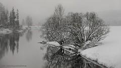 20150122069844 (koppomcolors) Tags: winter snow vinter sweden sverige scandinavia snö värmland varmland koppom skillingmark koppomcolors