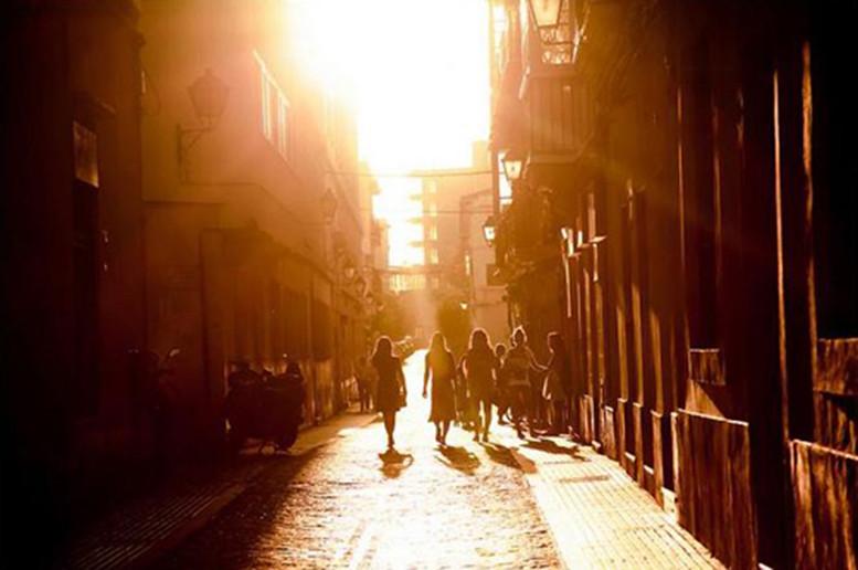 Ánh nắng mặt trời là nguồn sinh khí của bạn