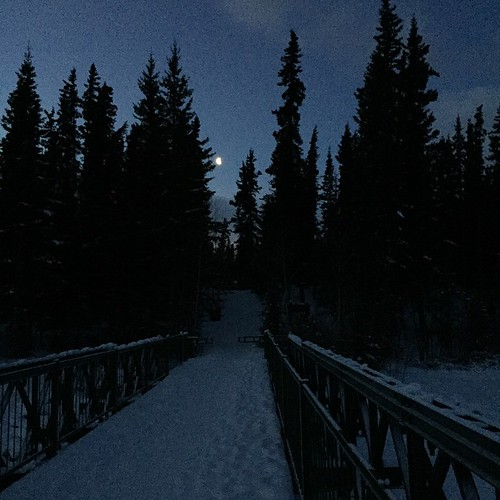 View of moon this morning just before sunrise at the bridge from Bert Law Park #yxy #Yukon