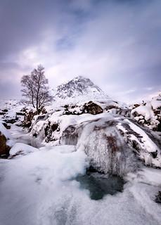 Cold Creation