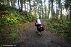Stub Stewart: Gravel Getaway #BikeTourR12 (russroca.com) Tags: bike oregon gravel biketouring arkel banksvernonia stubstewart salsavaya gravelriding biketourr12