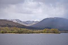 lochlomond-6 (nora on the move) Tags: lake nature scotland lochlomond