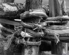 Ancient craft (sharken14) Tags: manmade