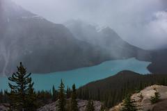 Peyto Lake (flippers) Tags: trees cloud mountain lake canada tree fog clouds haze alberta valley peytolake lowlying
