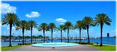 St Petersburg, Florida (lagergrenjan) Tags: mahaffey theater st petersburg florida palms marina