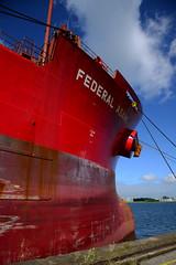 Federal Asahi (DST_1130) (larry_antwerp) Tags: nhs terminal federalasahi fednav laker antwerp antwerpen       port        belgium belgi          schip ship vessel        9200419