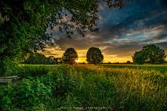 Sunset Niederrhein (fotos_by_toddi) Tags: light sunset germany deutschland lights licht energy sonnenuntergang outdoor sony energie natur feld felder wiese wiesen himmel wolke nrw alpha landschaft sonnenaufgang ruhrgebiet a7 lichter westfalen niederrhein ruhrpott nordrhein voerde alpha7 sonya7 fotosbytoddi