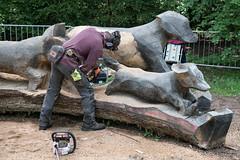 DSC_6759 (aglet) Tags: wood arboretum westonbirt scultpure 24120mmf4 nikond750