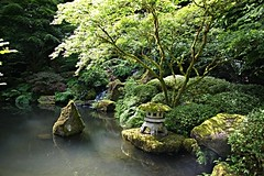 Symbolism (Herculeus.) Tags: trees usa mountains reflection gardens oregon portland japanesegarden moss stream outdoor or may ferns waterfeature symbolism floweringtrees 2016 5photosaday gardenfeaturenonplant bouldersstonerocks