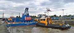 SWS Breda  (5) @ KGV 21-06-16 (AJBC_1) Tags: uk england london boat ship unitedkingdom vessel docklands tugboat tug riverthames eastlondon gallionsreach nikond3200 northwoolwich newham royaldocks multicat londonboroughofnewham cranebarge marineengineering multipurposevessel fortholympian swalshsonsltd kgvlock forthtrojan dlrblog londonsroyaldocks ajc kinggeorgevlock swsbreda briggsmarineandenvironmentalservices