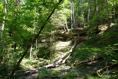 0V5A2406 (Connor Wyckoff) Tags: camping red river hiking kentucky backpacking gorge osprey