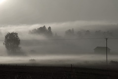Countryside (STTH64) Tags: field sunrise morning sky barn lakeus pohjanmaa finland mist fog haze