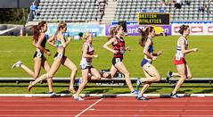 snowden (stevennokes) Tags: woman field athletics birmingham track meadows running smith mens british hudson sainsburys asher muir hurdles rooney 100m 200m sprinter 400m 800m 5000m 1500m mccolgan twell