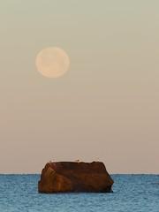 Moonset on the sea. (Sirke Vaarma) Tags: yyteri tysikuu kuu moonrising moon fullmoon colorful sea meri rock kivi