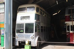 IMGB6390 Hastings BDY809 East Anglia Transport Museum 10 Aug 16 (Dave58282) Tags: eastangliatransportmuseum bus hastings bdy809