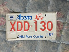 ALBERTA 1987---MOTORCYCLE PLATE #XDD130 (woody1778a) Tags: alberta canada traders trade fortrade forsale myhobby mytraders licenseplate numberplate registrationplate