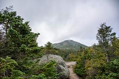 Marcy Peak (dxd379) Tags: mtmarcy peak summit ny newyork adirondacks mountain hiking trail nikon d7100