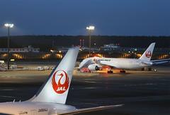 Dusk at Narita (Flame1958) Tags: japanairlines japanair jal jalb787 boeing787 boeingdreamliner dreamliner dusk airportatdusk ramp boeing 151016 1016 2016 ja864j ja845j nrt naritaairport 2414