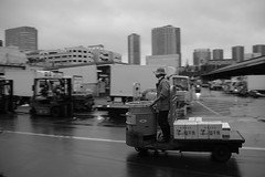 Tsukiji fish market (jonkermichel88) Tags: tsukiji fish market vis markt japan tokio tokyo japanse japanese werk work handel geld money reis reizen travel eten food fresh ice ijs voedsel