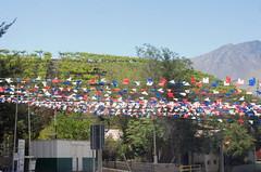 Que viva el 18 !, Montegrande - Chile (Laetitia_Buscaylet) Tags: chile montegrande valle elqui 18 fiesta nacional bandera