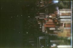 480 (konophotography) Tags: konophotography konophoto film filmisnotdead filmphotography analog analogue nature books buyfilmnotmegapixels 2016 35mm