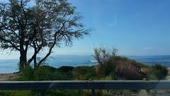 20141109_093343 (dntanderson) Tags: hawaii maui 2014 november09