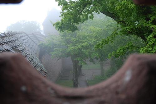 Brume sur le Haut-Kœnigsbourg