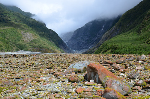 A wilderness, Franz Josef, New Zealand