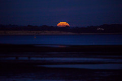 IMG_5478-Edit.jpg (hampshireview) Tags: sunset sea moon hampshire solent southampton lunar calcite