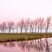 Holland at sunrise