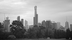 view from Shrine of Remembrance (Christine Amherd) Tags: park city blackandwhite bw white black creativity blackwhite cosmopolitan australia melbourne victoria sw vic australien ine schwarzweiss weiss parc schwarz weltstadt passionate shrineofremembrance scharzweiss mypassion parkmelbourne grossstadt schwarzundweiss christinescreativityphotography christinesphotography