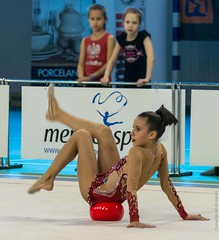20141115-_D8H3494 (ilvic) Tags: gymnastics