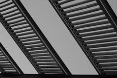 Escaleras ( fOto) Tags: plaza uruguay lumix expo panasonic montevideo m43 gf3 mirrorless seregni micro43 fyfuy claudiocigliutti